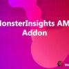 MonsterInsights AMP Addon