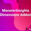 MonsterInsights Dimensions Addon
