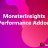 MonsterInsights Performance Addon