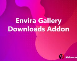 Envira Gallery Downloads Addon