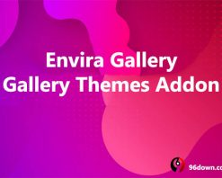 Envira Gallery Gallery Themes Addon