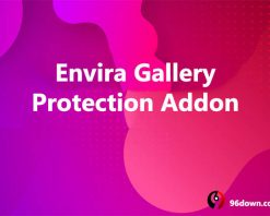 Envira Gallery Protection Addon